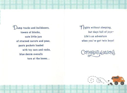 Lion Cubs Twin Boys Congratulations Card,