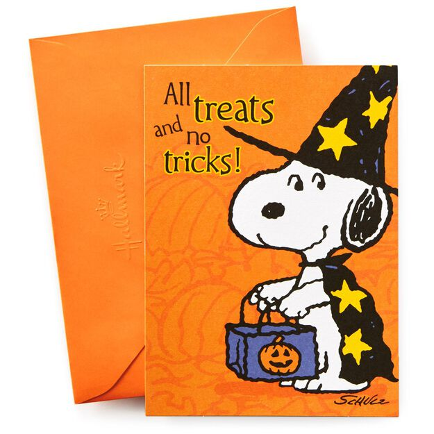 Peanuts Halloween Party Invitations 10 Invitations Hallmark – Snoopy Party Invitations