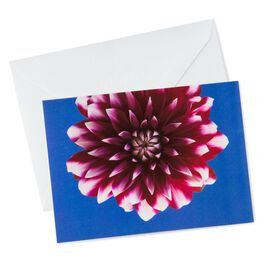 Photo of Purple Dahlia Note Cards, Pack of 10, , large
