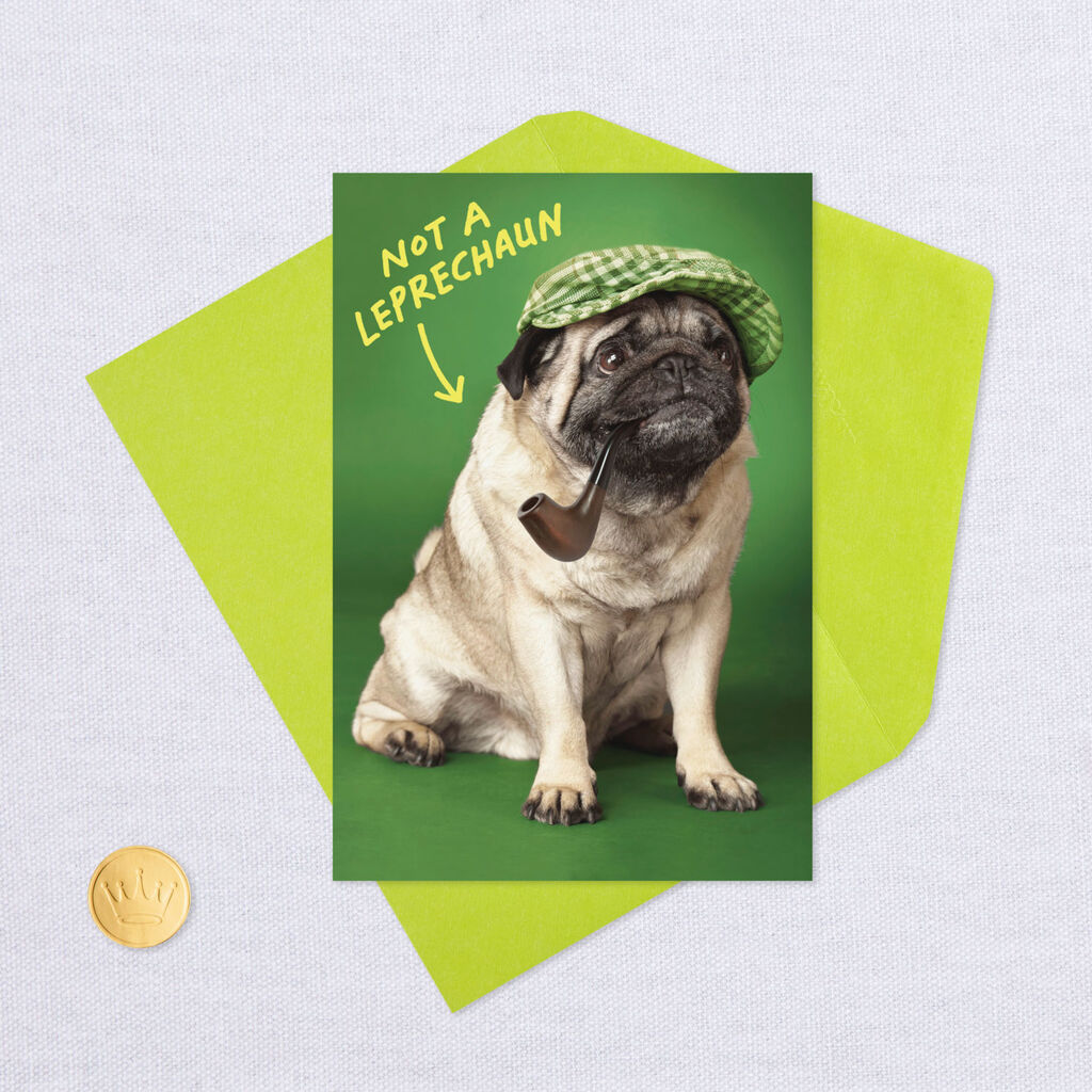 30a1af15fb620 Irish Pug St. Patrick s Day Card - Greeting Cards - Hallmark