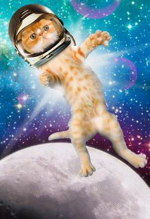 Cat in Space Funny Birthday Card,