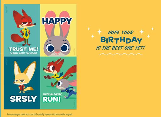 Disney Zootopia Birthday Adventure Card With Magnets,