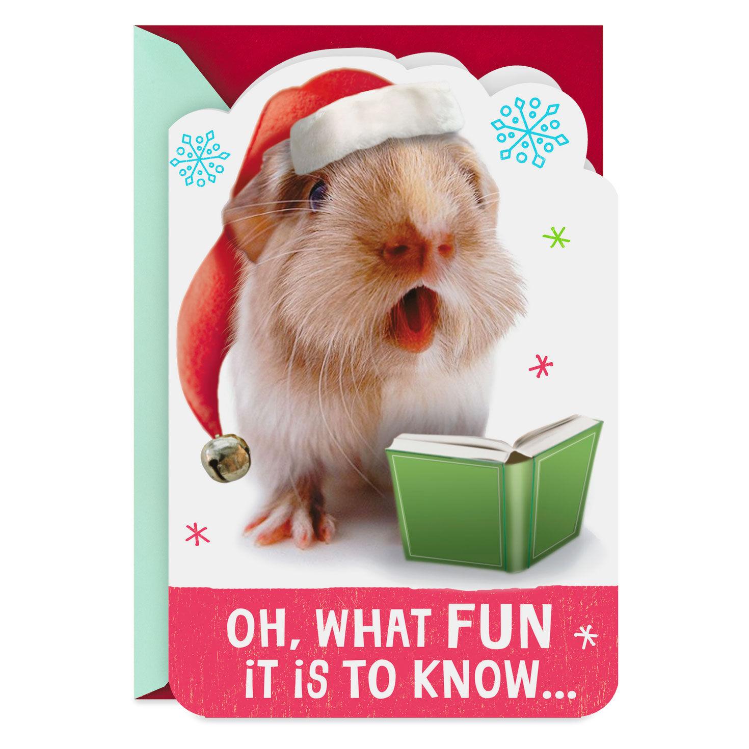 Funny Guinea Pigs Karaoke Birthday Card