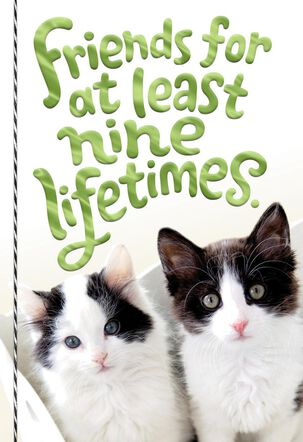 Friends for Nine Lifetimes Friendship Card