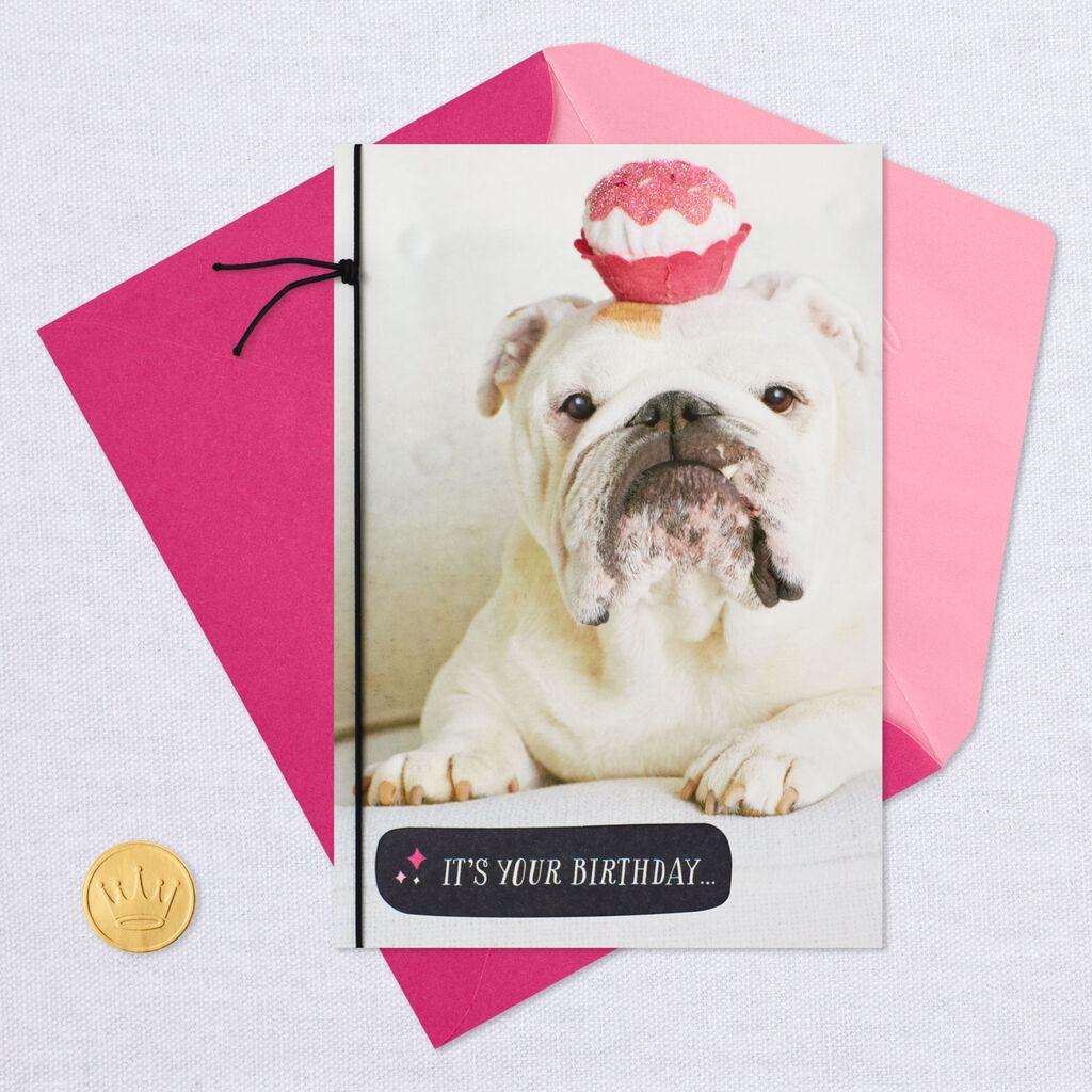 Bulldog Accessorize Accordingly Birthday Card