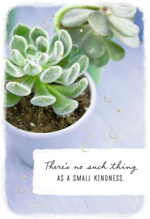 Succulent Plants No Small Kindness Thank You Card