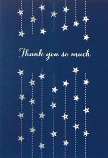 So Much Blank Thank You Card,