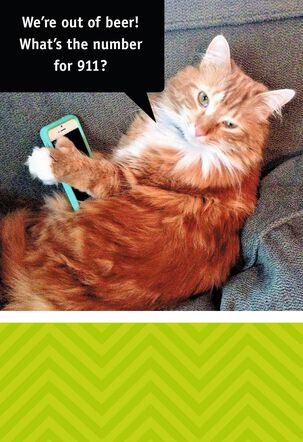 Tech Savvy Cat Funny Birthday Card