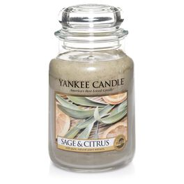 Sage & Citrus Large Jar Candle by Yankee Candle®, , large