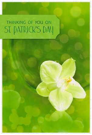 Thinking of You St. Patrick's Day Card
