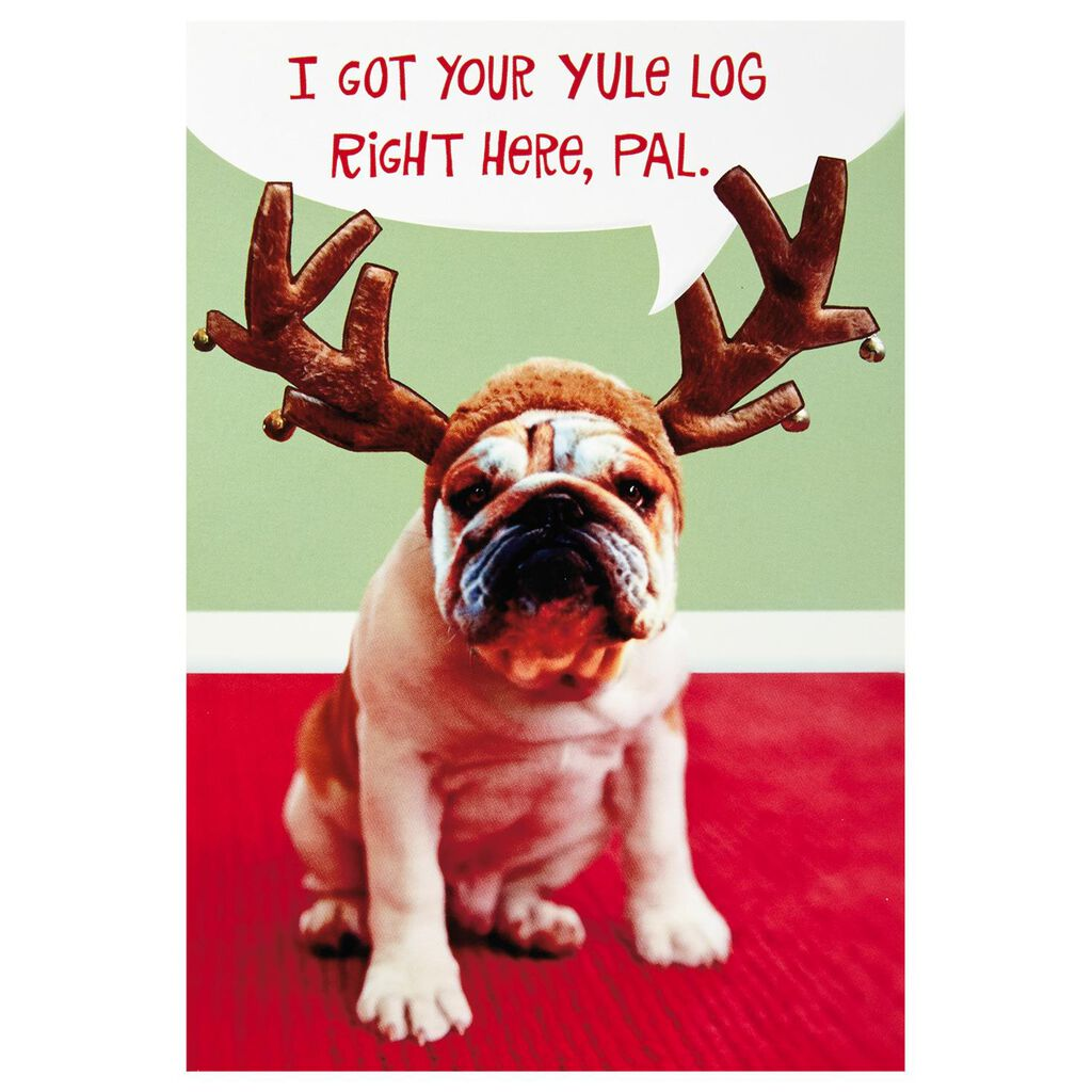 Dog and Yule Log Funny Christmas Cards, Box of 16 - Boxed Cards ...