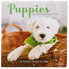 Puppies 2018 Mini Wall Calendar, 12-Month, , large