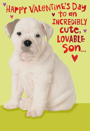 Cute Puppy for Son Valentine's Day Card