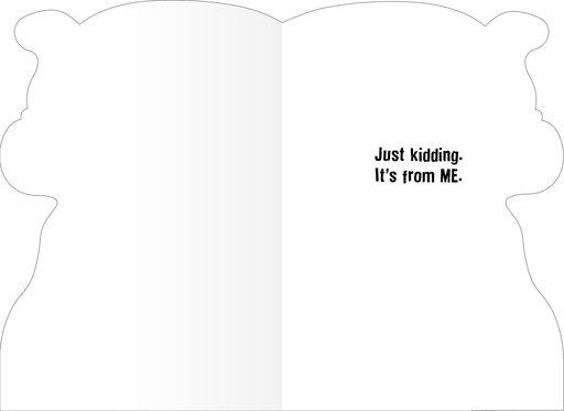 Respectful Admiration Funny Birthday Card,