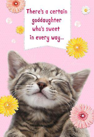 Daisy Kitten Birthday Card for Goddaughter
