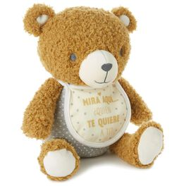 Mira Aqui Teddy Bear Stuffed Animal With Picture Frame, , large