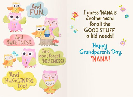 Two Owls Nana Means Love Grandparents Day Card,