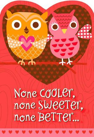 Cool Aunt and Uncle Valentine's Day Card