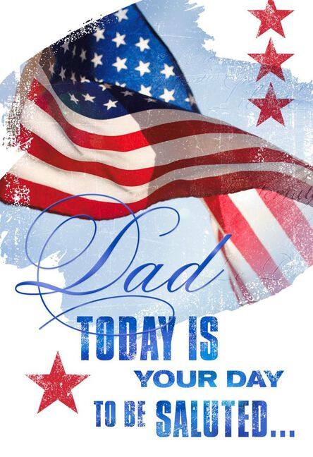 We salute you veterans day card for dad greeting cards hallmark we salute you veterans day card for dad m4hsunfo
