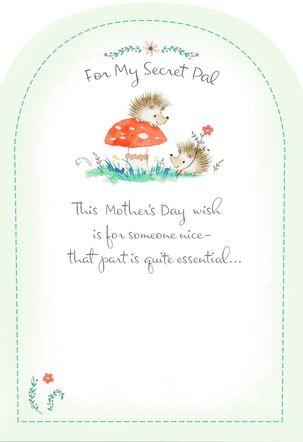 Hedgehog Secret Pal Mother's Day Card
