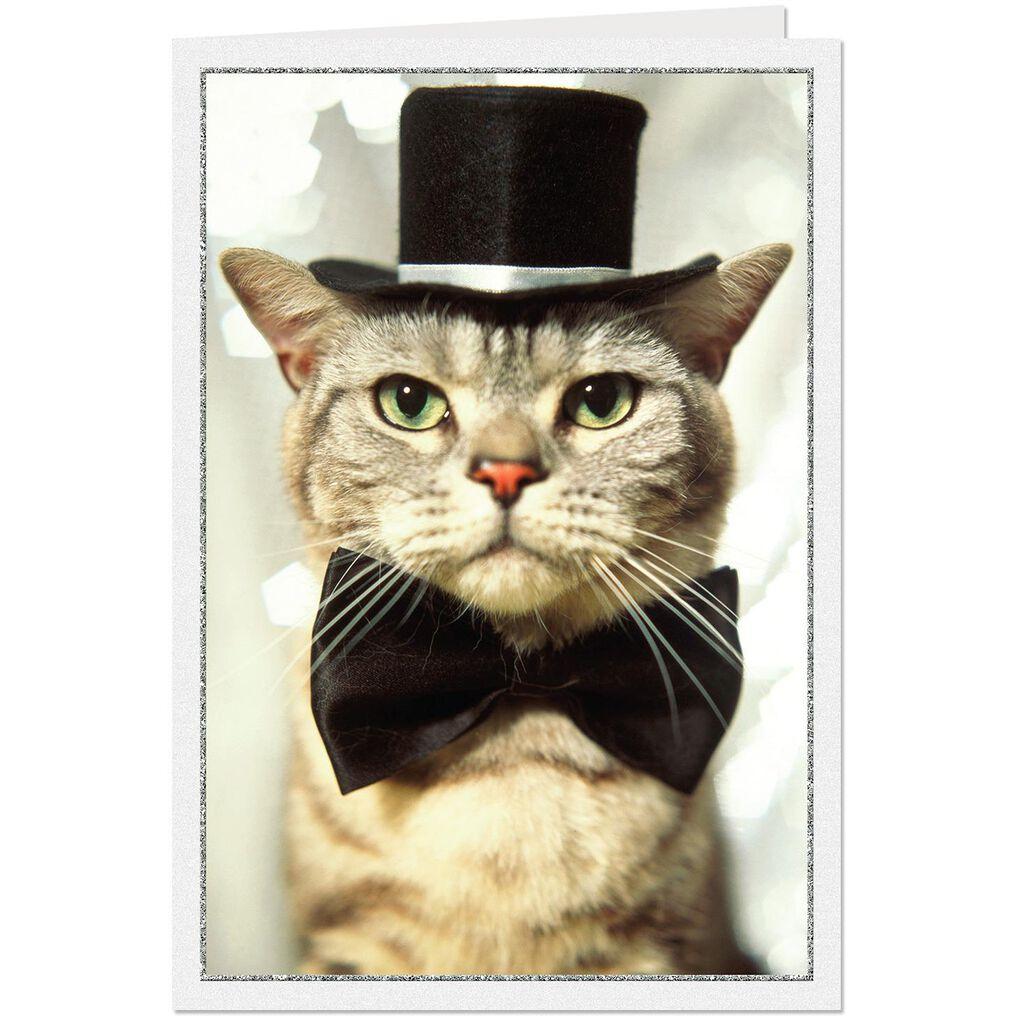 Wishing You a Furry New Year Card - Greeting Cards - Hallmark 772ea65dc6680