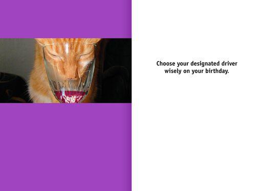 Wine Tasting Cat Funny Birthday Card,