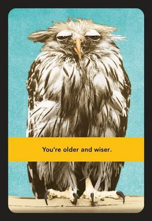 Wise Old Owl Funny Birthday Card
