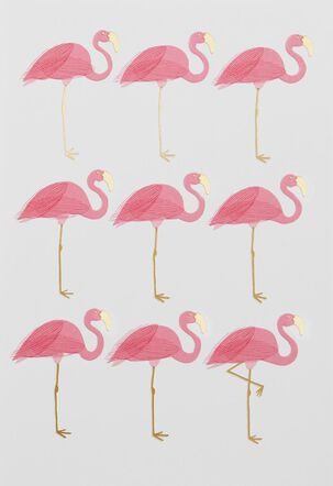 Nine Flamingos Blank Card