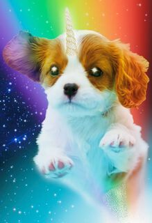 Dogicorn Cosmic Funny Birthday Card,