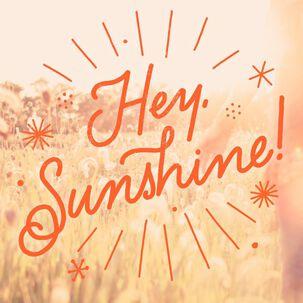 Hey Sunshine Just Because Music Card