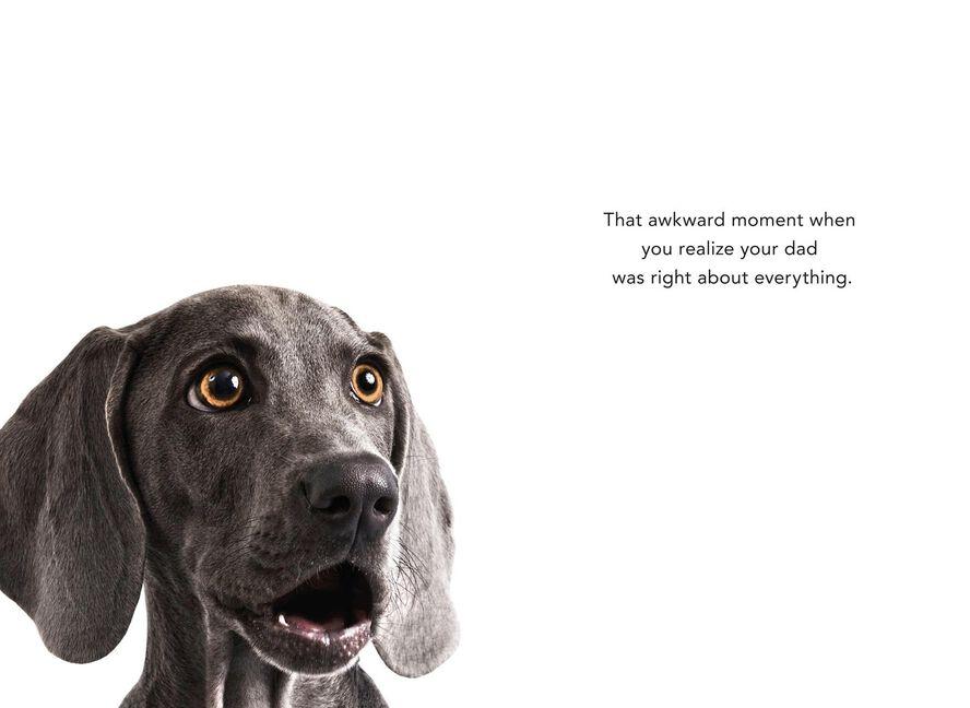 Hog Diggity Dog Funny Father\'s Day Card - Greeting Cards - Hallmark