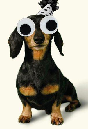 Googly Eyes Wiener Dog Funny Birthday