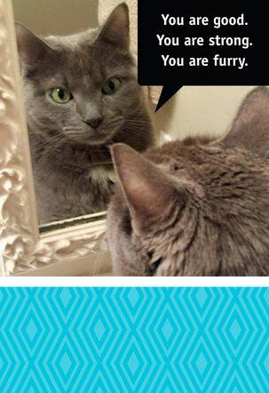 Cat Pep Talk Funny Birthday Card