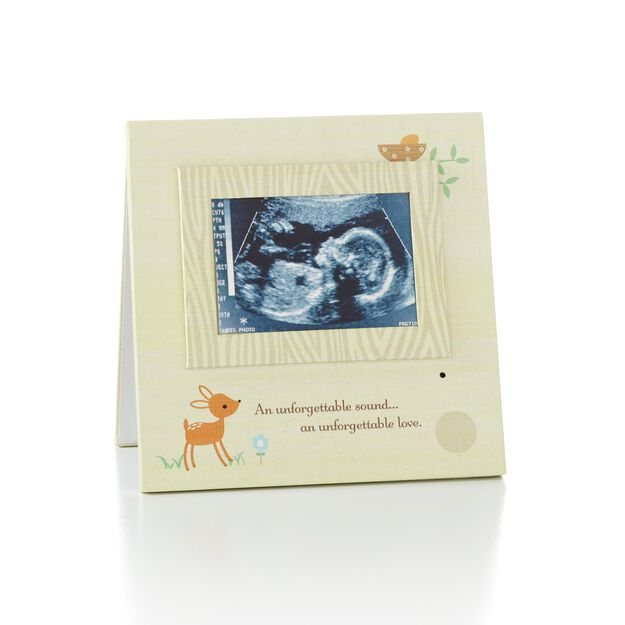 recordable sonogram picture frame