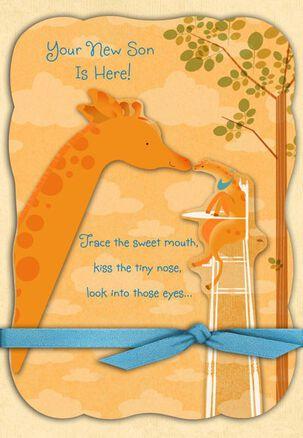 Giraffes for a Baby Boy Congratulations Card