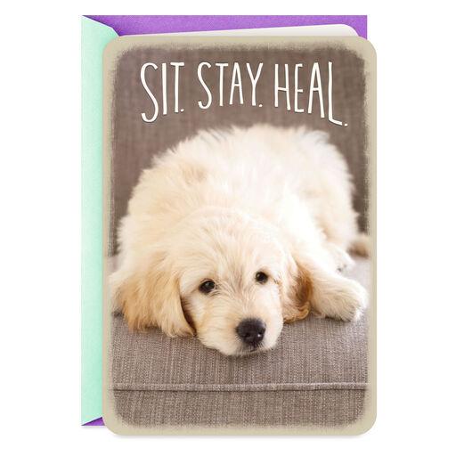 Get Well Cards | Hallmark