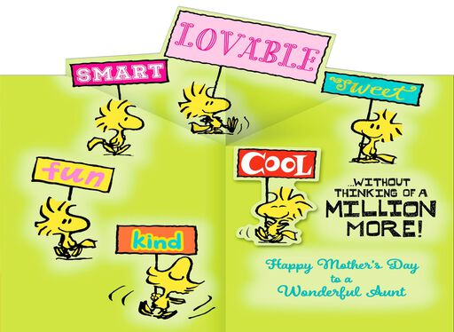 Peanuts® Mother's Day Card for a Wonderful Aunt,