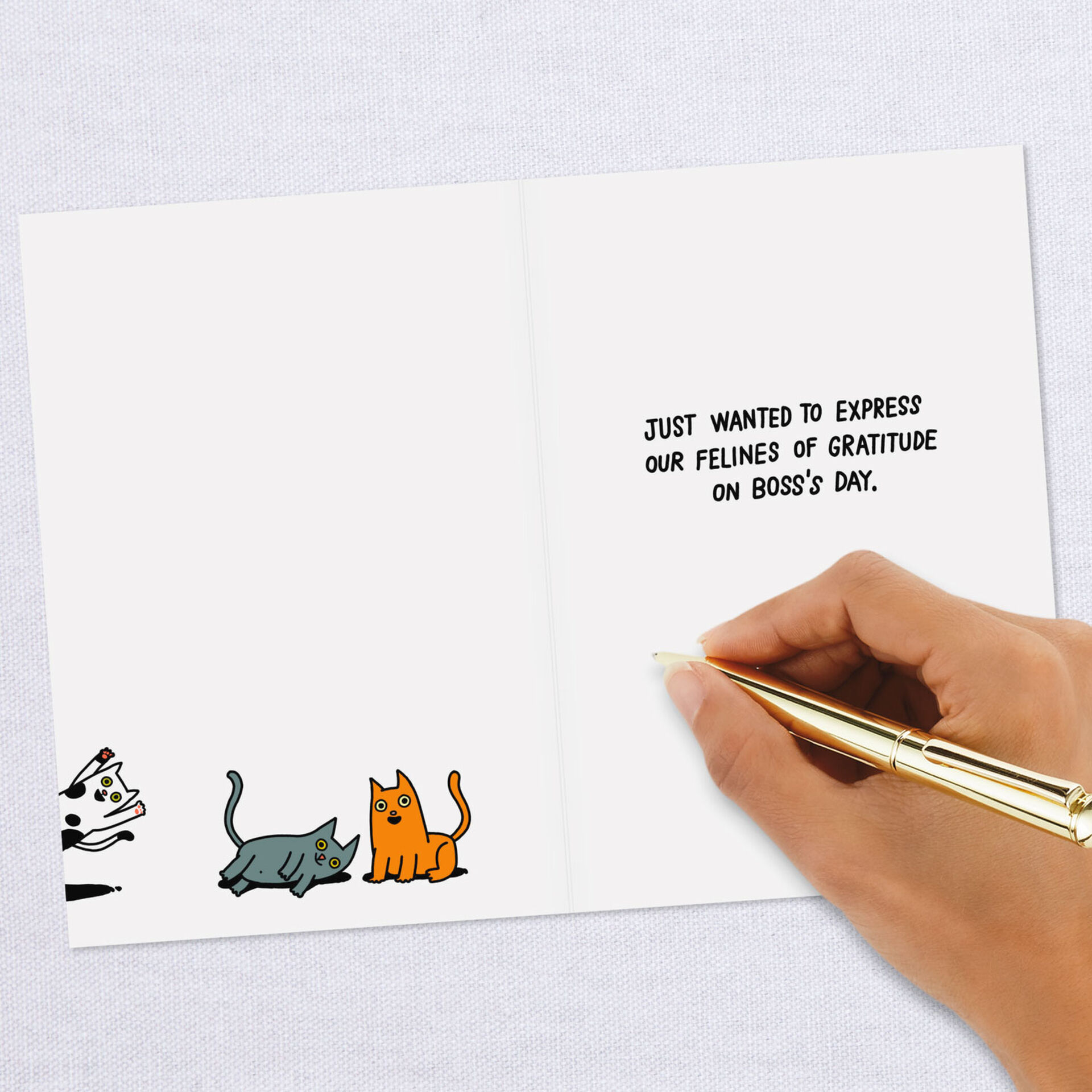 Cat Gratitude Funny Boss S Day Card From Us Greeting Cards Hallmark
