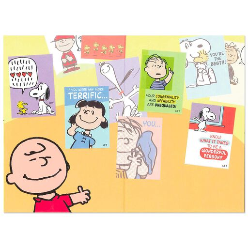 45728312bc ... Peanuts® Charlie Brown How Wonderful You Are Birthday Card
