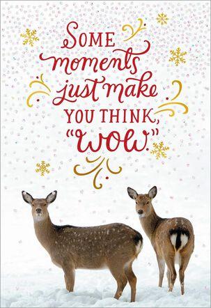 Deer Photo Christmas Card