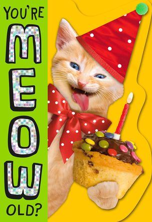 Meow Old Birthday Card