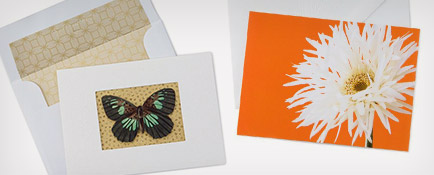 Butterfly and flower stationery notecards