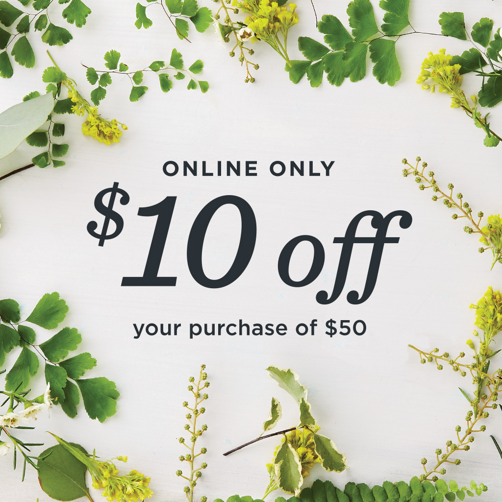 Save $10 on your purchase of $50 or more