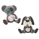 Dog and Koala Special Offer