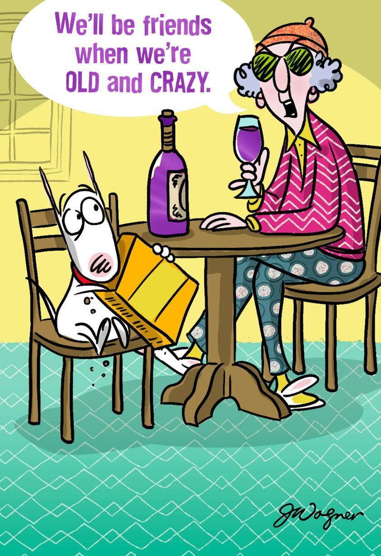 Old and Crazy Funny Birthday Card - Greeting Cards - Hallmark   Funny Happy Birthday Postcards