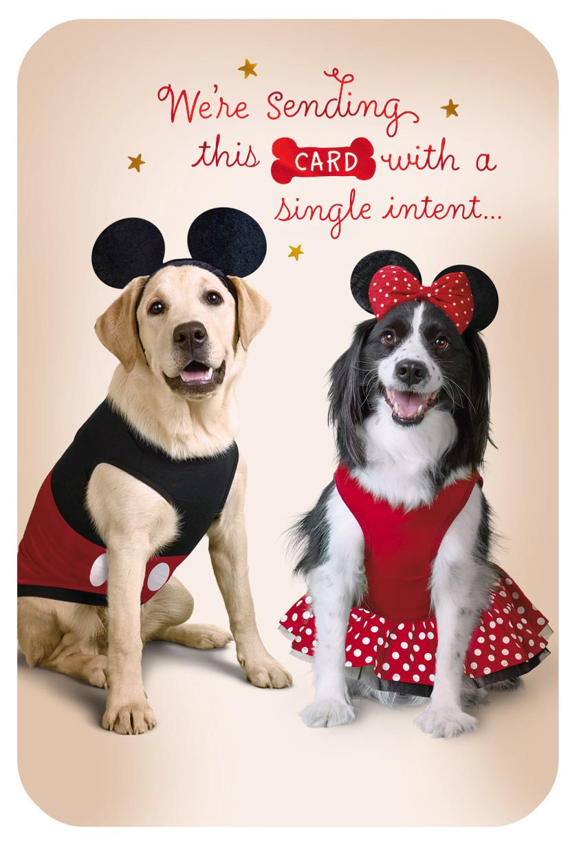 Disney Mickey And Minnie Dogs In Costume Birthday Card