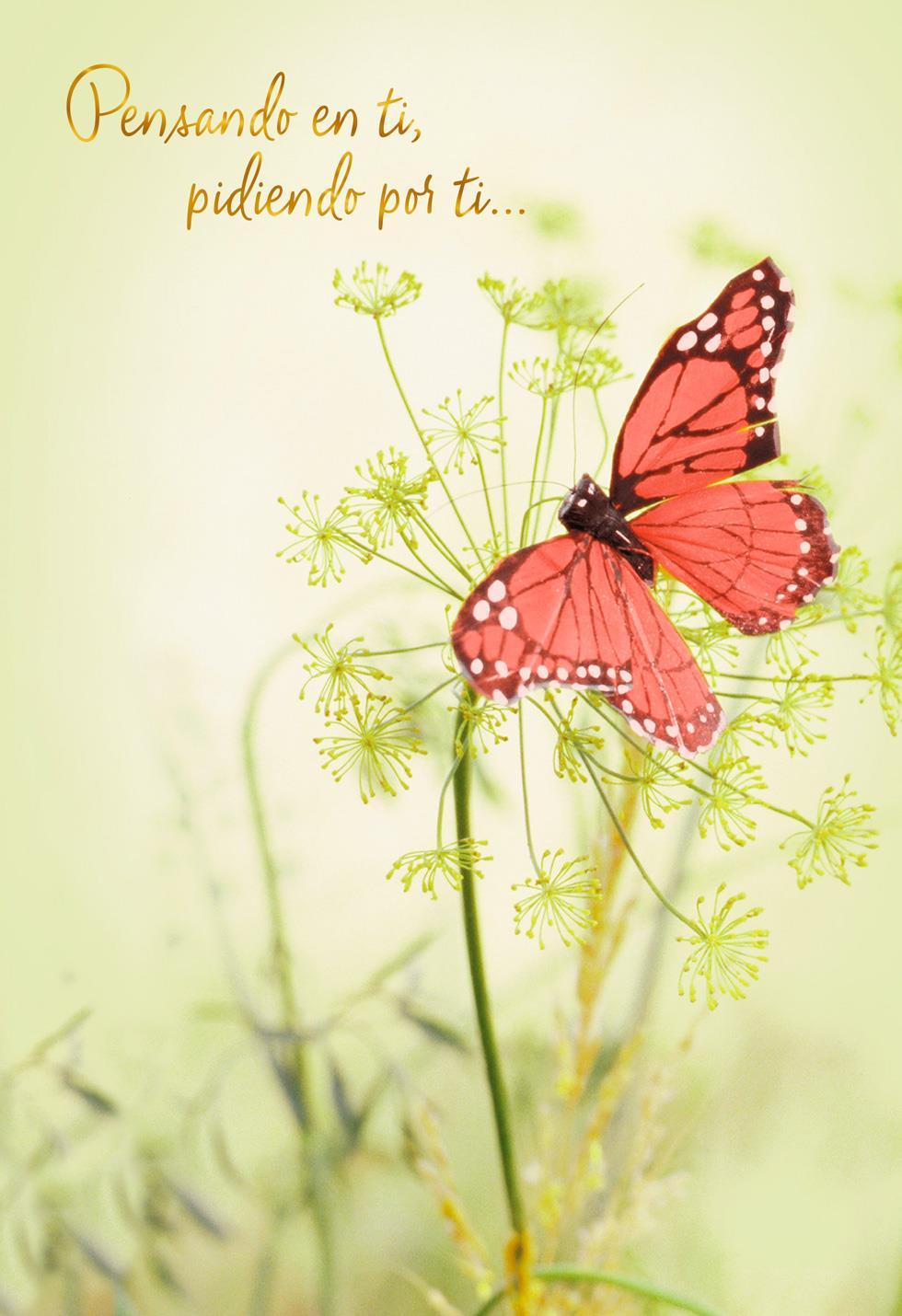 Wishing You Peace Spanish Language Sympathy Card