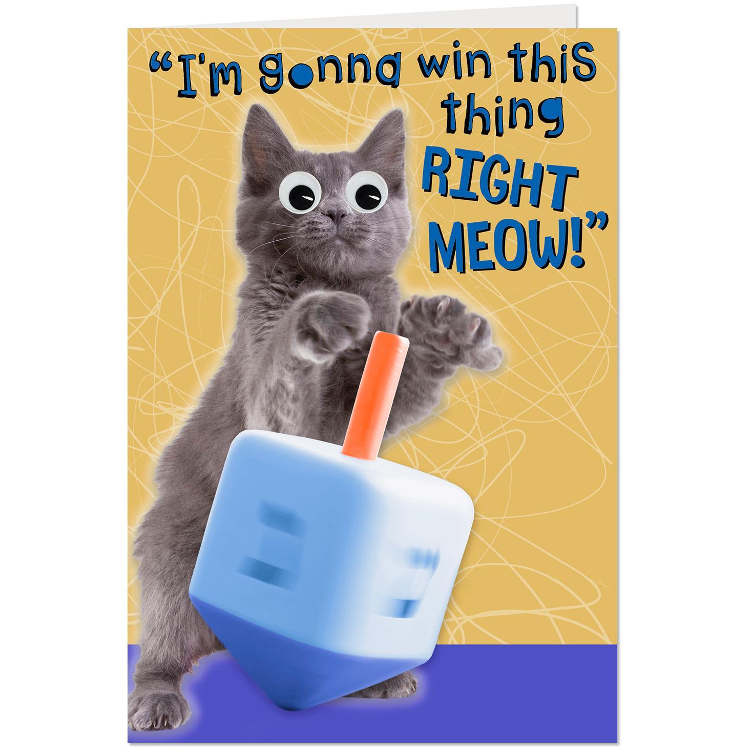 cat playing dreidel funny hanukkah card - Funny Hanukkah Cards