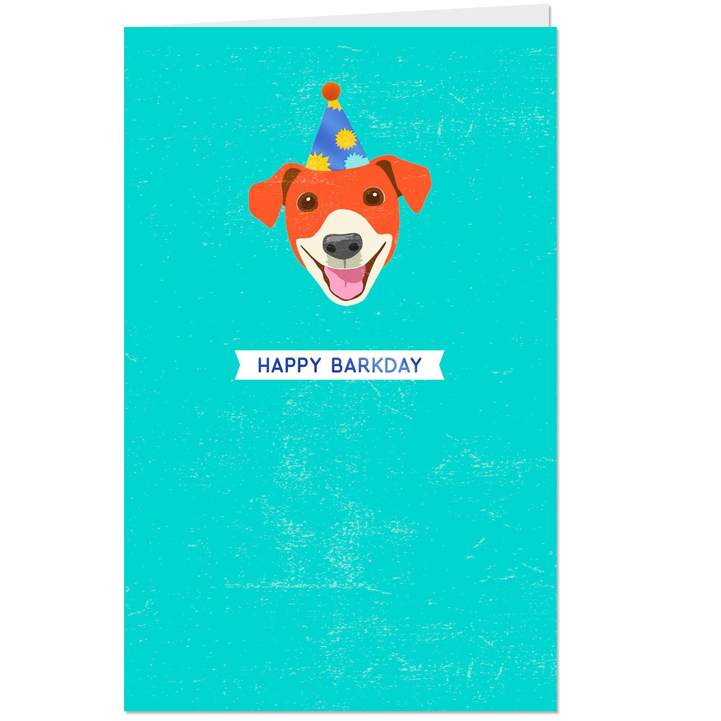 Dog In A Party Hat Birthday Card From The