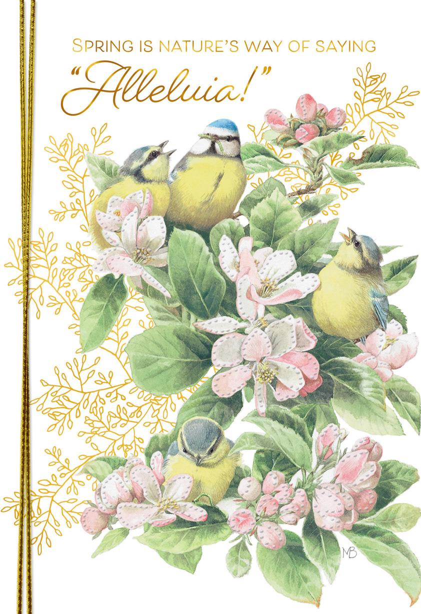 Marjolein Bastin Songbirds Easter Card Greeting Cards